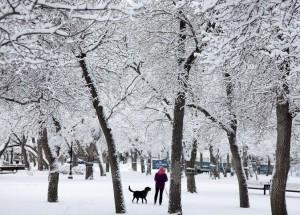 canada-neige